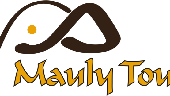 MAULY TOURS & SAFARIS