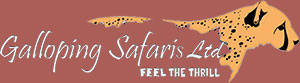 Galloping Safaris Ltd