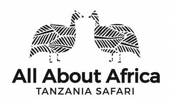 ALL ABOUT AFRICA LTD