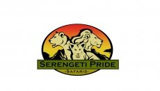 Serengeti Pride Safaris tour co.