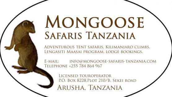 Mongoose Safaris Tanzania Ltd
