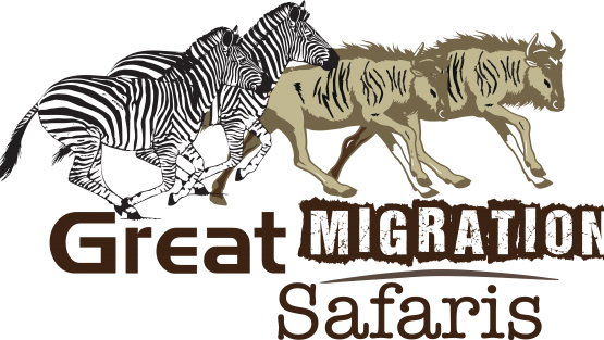 Great Migration Safaris Ltd