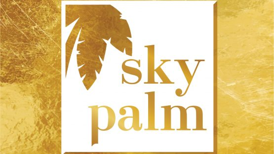 SKYPALM TRAVEL & TOURS LIMITED
